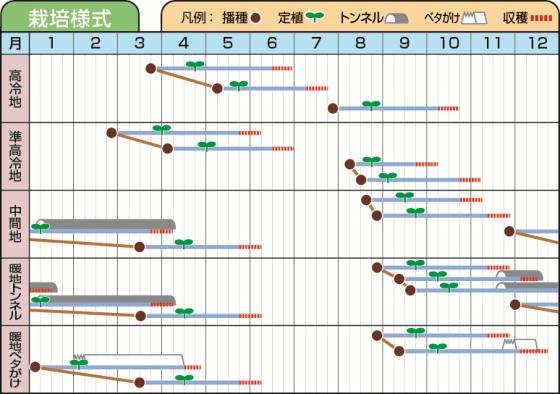 アネッサ栽培様式表