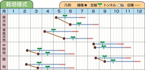 アルゴス栽培様式