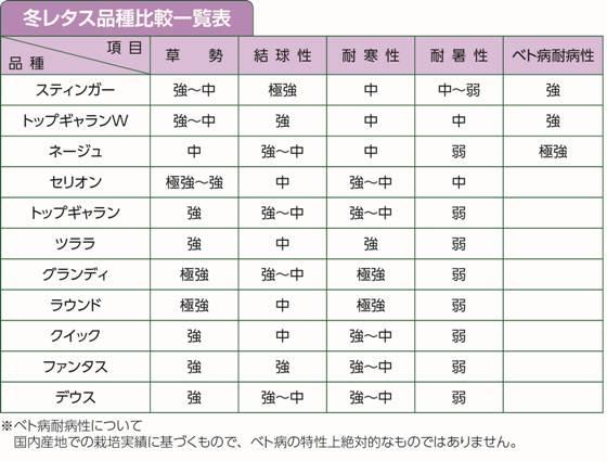 冬レタス品種比較一覧表