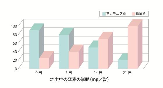培土中の窒素の挙動